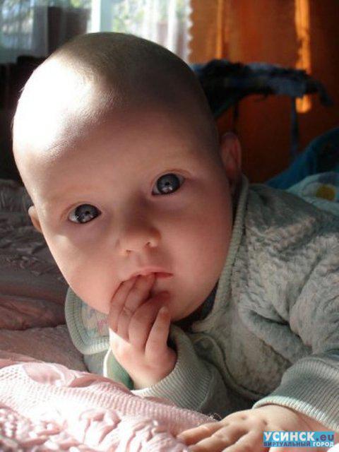 ТК, гибкий сирота на усыновление степан 2015 года рождения информация