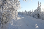 Проезд по «зимнику» в Печорском районе временно закрыт