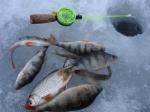 7 апреля в Усинске пройдут соревнования по рыбной ловле