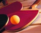 Сборная Усинска выступила на Первенстве РК по настольному теннису