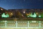 В сквере вокруг памятника комару яркими разноцветными огнями зажглись светодиодные деревья