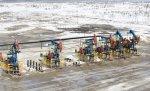 Началась добыча нефти на новом месторождении в Тимано-Печоре