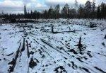 Коми-ижемцы пытаются остановить работу Лукойла на территории района