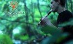 Этнофестиваль «Люди леса»