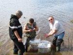 Восстановление водных биоресурсов – важное звено масштабной и комплексной работы в области экологической безопасности ООО «РН – Северная нефть»